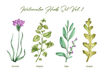Plakat Watercolor herbs set volume 1. Illustration in high resolution.