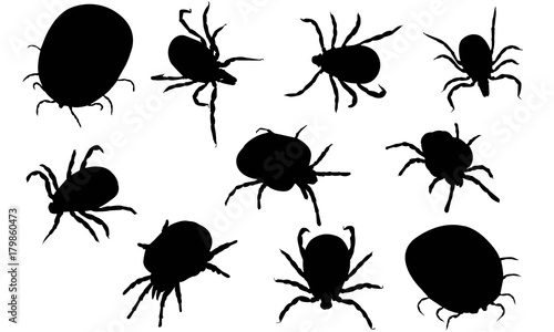 Mite Silhouette Vector Graphics Wallpaper Mural