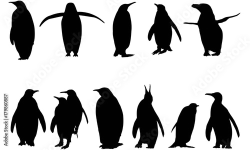 Penguin Silhouette Vector Graphics Wallpaper Mural