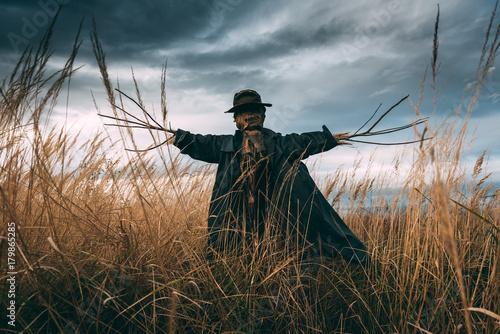 Obraz na plátně Scary scarecrow in a hat