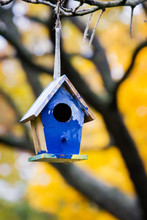 Empty Bird House In The Fall; ...