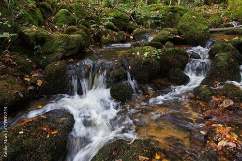Zdjęcie XXL Jesień w Ysperklamm - Dolna Austria