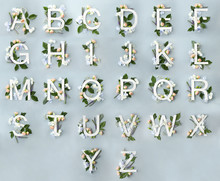 Alphabet With Floral Decoratio...
