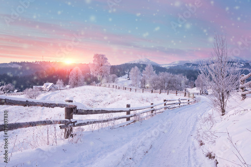 Tuinposter Purper Winter country landscape with timber fence and snowy road