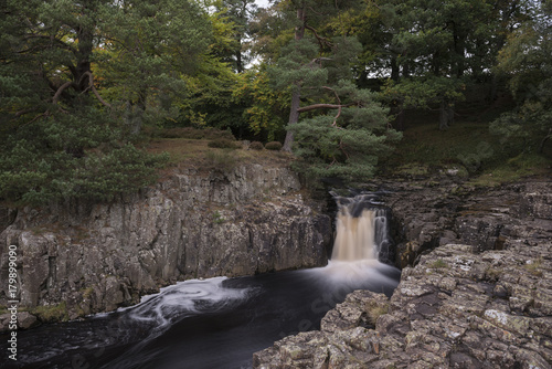 maly-skalisty-wodospad-w-ciemnym-lesie
