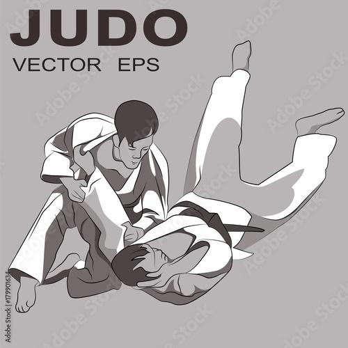 Fotografie, Obraz  Judo in brown