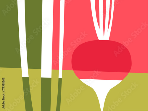 Streszczenie warzywo projekt w stylu płaski wyciąć. Czerwona i różowa rzodkiewka i łodygi. Ilustracji wektorowych.
