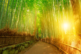 Fototapeta Bamboo - Bamboo grove at Sagano in Arashiyama in surreal sunlit. The forest is Kyoto's second most popular tourist destination and among the 100 phonetic stations in Japan. Meditative listening concept.