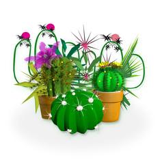 Panel Szklany Do pokoju dziewczyny composizione di piante grasse