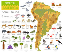 South America Flora And Fauna Map, Flat Elements. Animals, Birds And Sea Life Big Set. Build Your Geography Infographics Collection