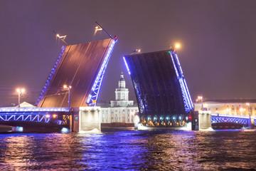 Fototapeta na wymiar divorced palace bridge in st. petersburg