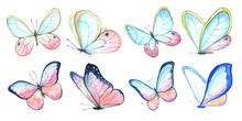 Collection Watercolor Of Flyin...