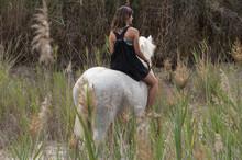 Young Woman On Horseback