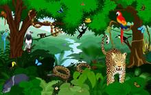 Rainforest With Animals Vector...