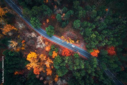 widok-z-lotu-ptaka-droga-w-pieknym-jesien-lesie-zadziwiajacy-krajobraz-z-pusta-wiejska-droga-drzewa-z-zielonymi-czerwonymi-i-pomaranczowymi-liscmi-w-dniu-autostrada-przez-park-widok-z-gory-z-latajacego-drona-natura