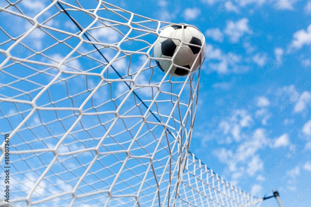 A Soccer Ball in a Net