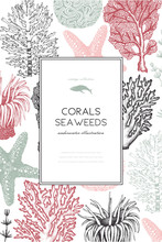 Vector Frame With Hand Drawn Sea Corals, Fish, Stars Sketch. Vintage Background With Underwater Natural Elements. Decorative Sealife Illustration Isolated On White. Wedding Design.