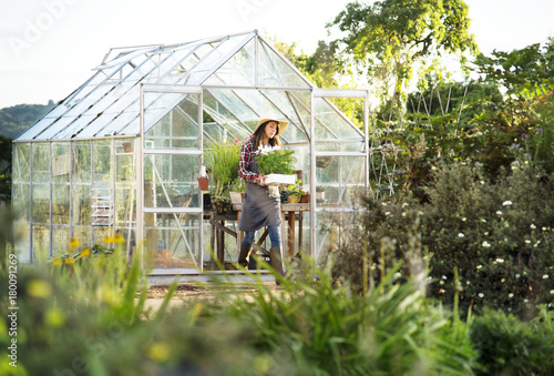 Fotografia Young woman in the glass greenhouse