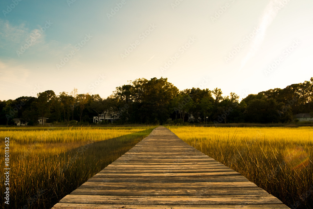 Fototapety, obrazy: wooden pier in south carolina low country marsh at sunset with green grass
