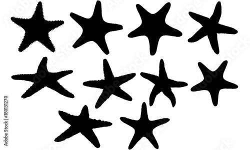 Star fish Silhouette Vector Graphics