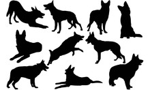 German Shepherd Dog Silhouette...