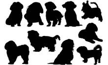 Shih Tzu Dog Silhouette Vector...