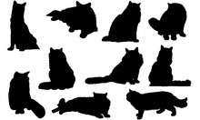 Ragdoll Cat Silhouette Vector Graphics