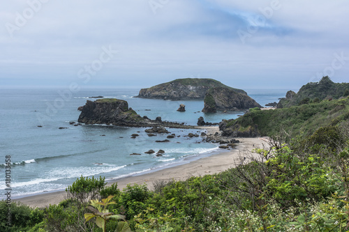Foto op Plexiglas Kust The coast along Brookings, Oregon