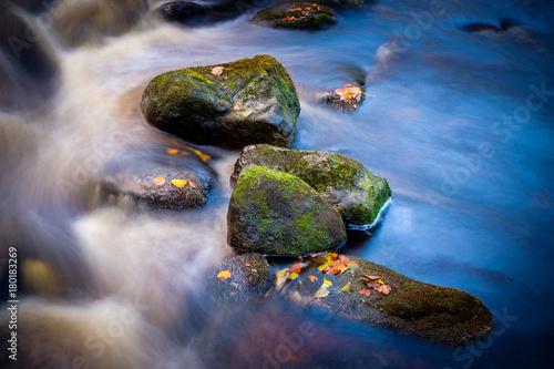 mokre-kamienie-w-wodzie-z-jesiennymi-liscmi
