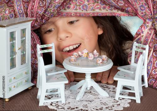 Tea in a dollhouse Canvas-taulu