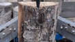Kraftvoller Holzspalter spaltet dicken Stamm