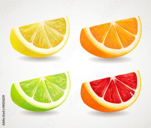 Fototapeta Citrus fresh fruits set. Orange, lime, grapefruit, lemon realistic quarters illustrations obraz