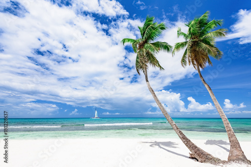 Deurstickers Strand resort beach palm tree sea Dominican Republic
