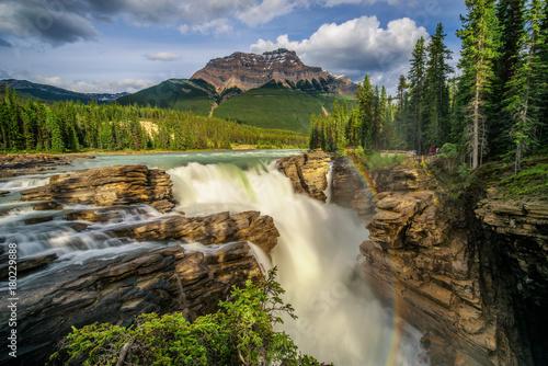 Obraz na plátně  Sunwapta Falls in Jasper National Park, Canada