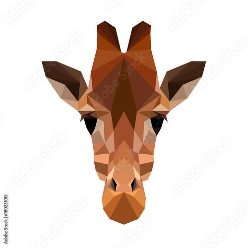 Valokuva  Vector polygonal giraffe isolated on white