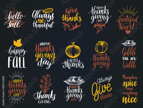 Fotografie, Tablou  Set of lettering and illustrations for Thanksgiving Day
