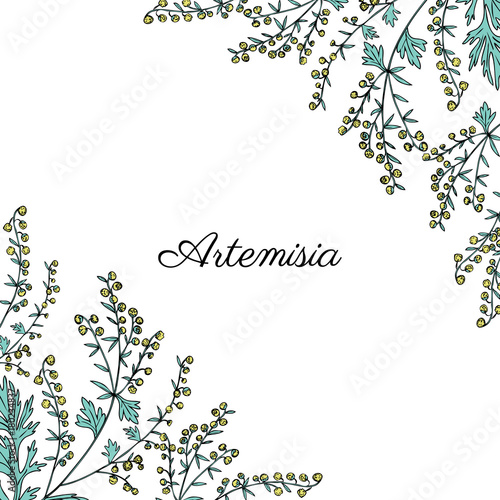Photo Frame with Artemisia vulgaris, border common wormwood hand drawn vector illustra