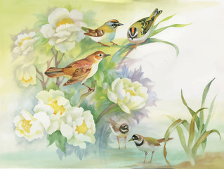 Fototapeta Do sypialni Watercolor hand drawn colorful beautiful flower and birds.