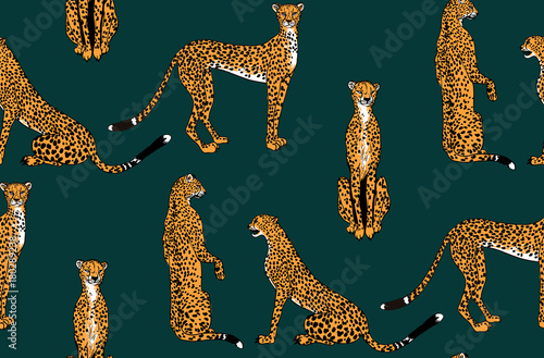 Photographie  Seamless leopard in different poses pattern. Vector illustration