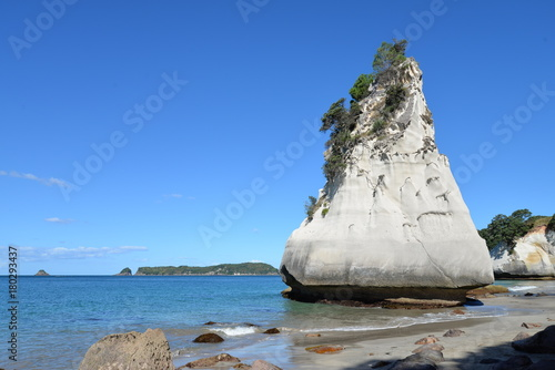Deurstickers Cathedral Cove Cathedral Cove - Coromandel - New Zealand