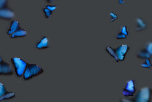 Background With Blue Butterfli...