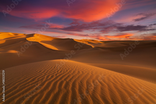 Photo sur Toile Desert de sable Beautiful sand dunes in the Sahara desert