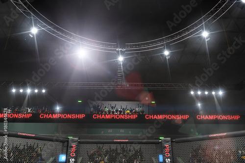 Plakat Widok z boku sceny walki mma pod światłami