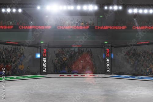Fotografie, Obraz  mma fighting stage side view under lights