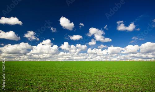 Plakat Zielone pole pod chmurami