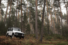 4x4 In The Middle Of The Fores...