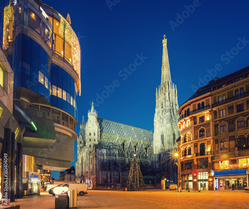St. Stephan cathedral and christmas tree, Vienna