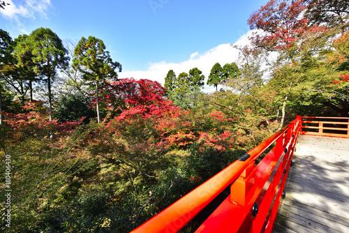 もみじ苑の欄干と紅葉 Wallpaper Mural
