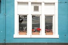 Ventanal Con Tres Cristales Con Marco De Madera Pintado De Blanco Y Maceta De Geranios Rojos En El Alféizar En Una Pared De Color Azul.