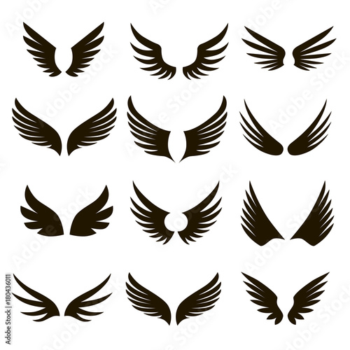 12 black and white wings icons Wall mural